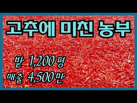 UHD_1628643610xux.jpg